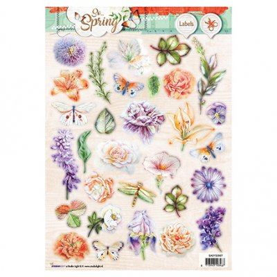 A4 Studiolight kuva-arkki: So Spring